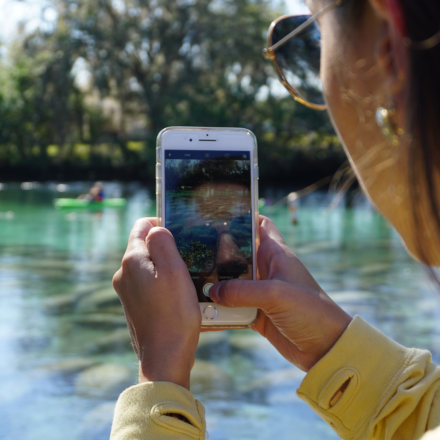 A girl taking a photo of manatees on her iphone.