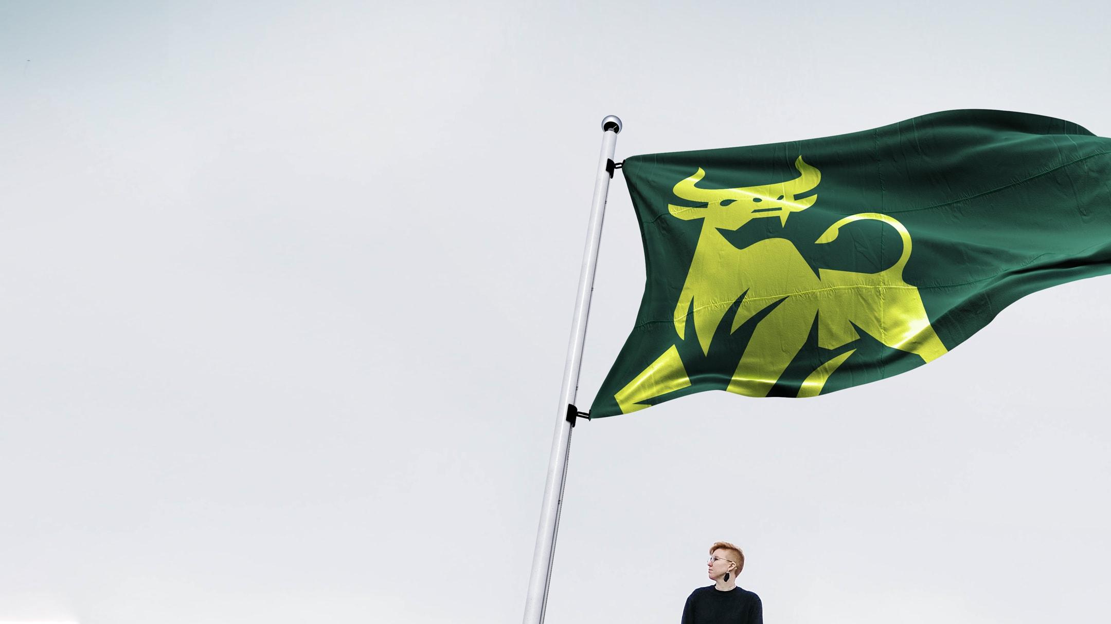 USF rebrand sample - waving campus flag