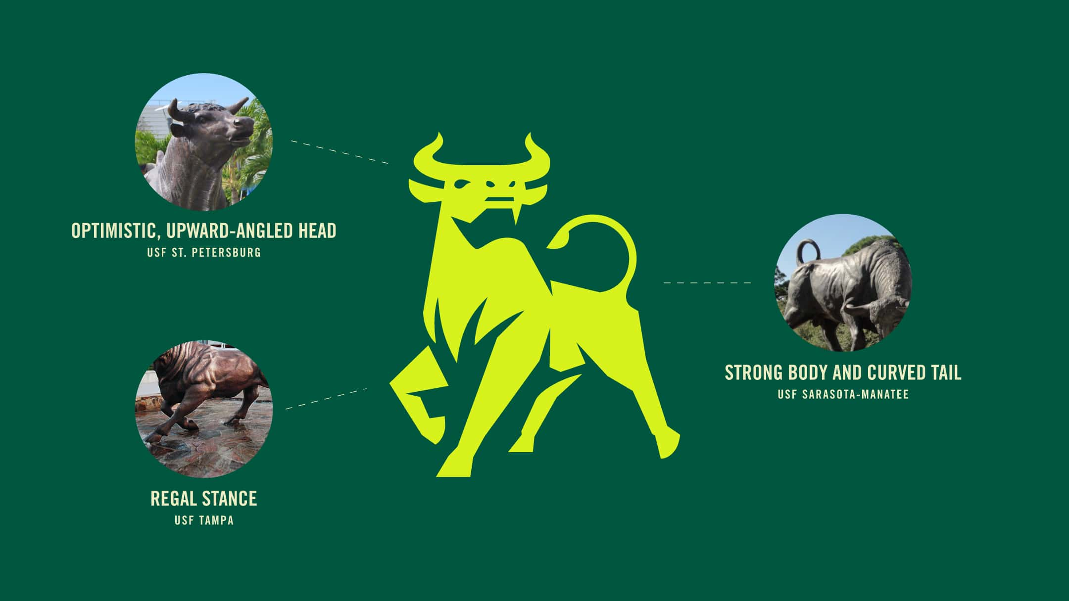 How USF's various campuses inspired the new USF Academics Logo