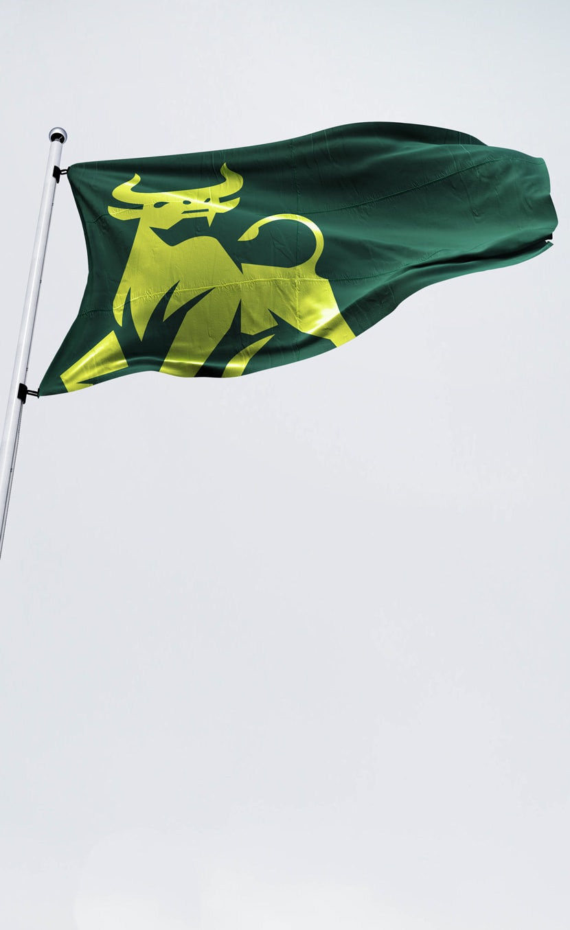 USF rebrand sample - waving campus flag mobile